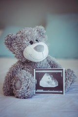 View of teddy bear and baby ultrasound
