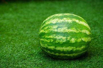 Summer and fresh watermelon theme: beautiful ripe watermelon lying on the grass