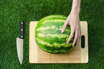 Summer and fresh watermelon topic: human hand with a knife beginning to cut a watermelon on the grass on a cutting board