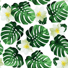 Seamless pattern of leaves monstera and exotic flowers