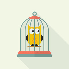 Owl in bird cage
