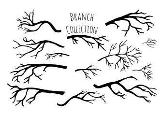 Hand drawn tree branches collection.