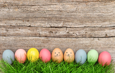 Funny easter eggs in green grass. Cute decoration
