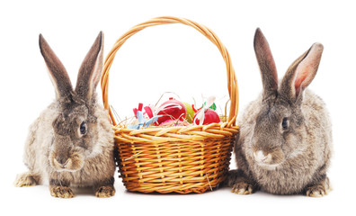 Easter bunnies with colored eggs.