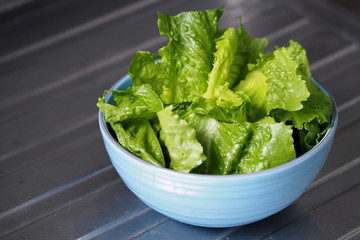 Green salad cos romaine lettuce sliced in blue bowl