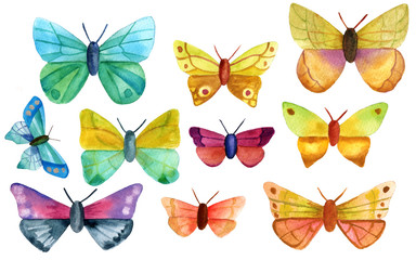 Set of ten watercolor butterflies on white background
