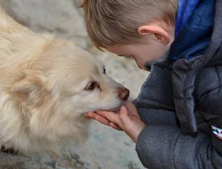 câlin chien enfant