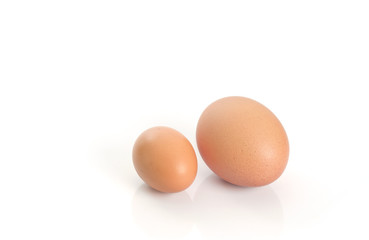 Eggs / Brown eggs placed on white background.