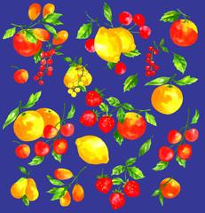 フルーツを水彩画で