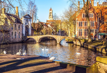 Minnewater landscape with swans at evening in Brugge, Belgium.