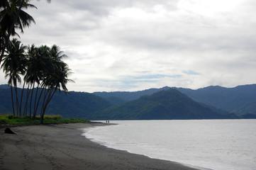Sand sea coast with palms mountain view