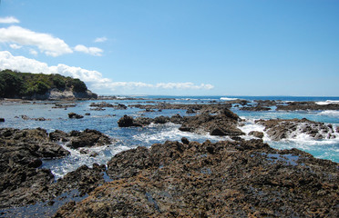 Rocks at low tide ocean coast