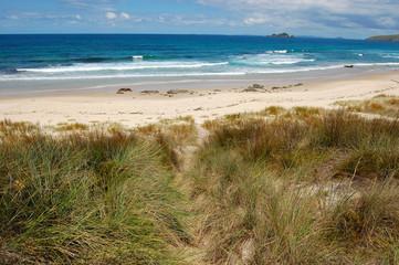 White sand beach sea coast in outback of New Zealand