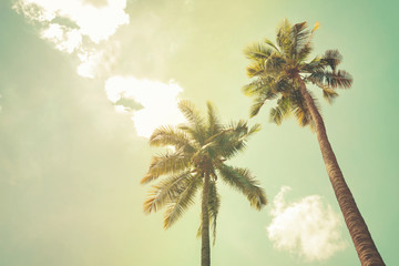 Palm trees at tropical beach coast, vintage color tone and film stylized