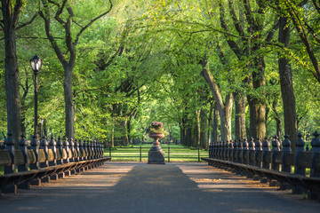 Central Park. Image of The Mall area in Central Park, New York City, USA