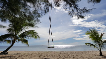 the lonely swing at the beach surrounded with coconut tree