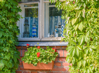 Window with nautical theme