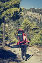 Yount femela trekker on her way through mountain forest.