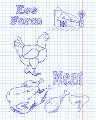 chicken diagram and pieces of meat drawing with pan
