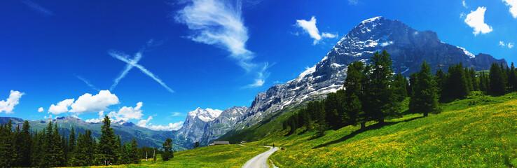 Eiger mit Blick auf Grindelwald