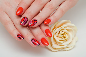 exclusive manicure in summer colors