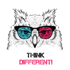 Portrait of the owl in the colored glasses. Think different. Vector illustration.