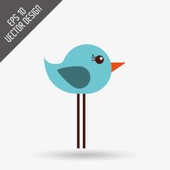 bird icon design