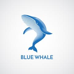 Blue whale detailed logo sign emblem isolated vector illustratio