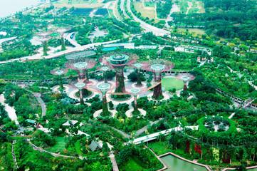 Singapore Supertree