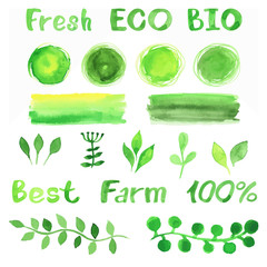 Set of green watercolor organic bio backgrounds, spots, font, lo