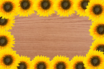 Frame of garden tools and flowers. Yellow sunflowers on wood bac