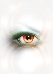 Woman eye and white background. Copy space.