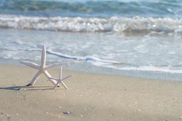 Sea shells and stars. Summer beach, sand, waves. Selective focus.