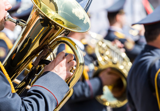 military musician with brass tuba at street concert