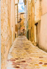 Wall Mural - View of a old rustic alleyway with old paving stones and mediterranean buildings