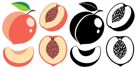 Vector color and monochrome peaches