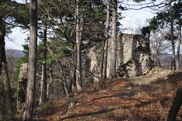 Perchtoldsdorf Ruine Kammerstein