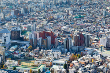 Aerial view of Tokyo city residence area, Japan