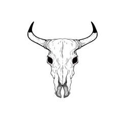 Hand drawn Buffalo Skull Native American Totem