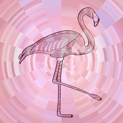 Flamingo black line drawing on abstract pink circle background composed from sliver