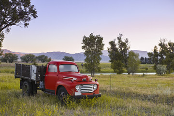Vintage Truck in a Country Field
