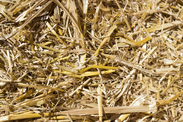 Hay bale close up
