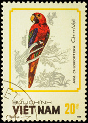Bird Ara chloroptera on postage stamp