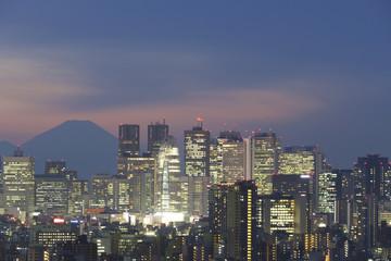 富士山と新宿高層ビル群 トワイライト マジックアワー