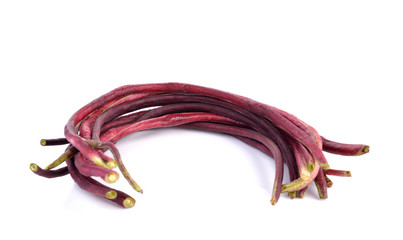 red Long bean  on white background