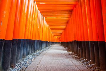 Thousands of vermilion torii gates at Kyoto Fushimi Inari Shrine Wall mural
