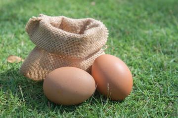 Sack fresh egg on a green grass