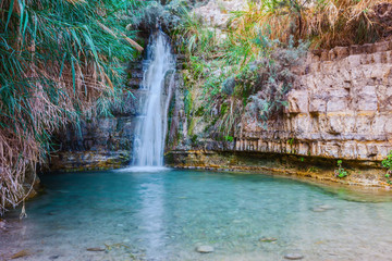 Walk in the national park Ein Gedi, Israel
