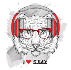 The image of the tiger in the glasses and headphones. Vector illustration.