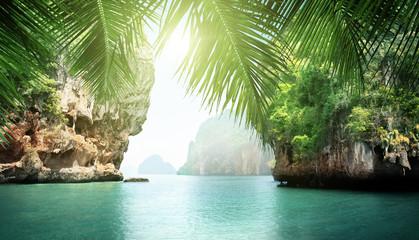 Fotomurales - tropical sea and rocks
